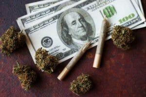 Buying Marijuana Seeds