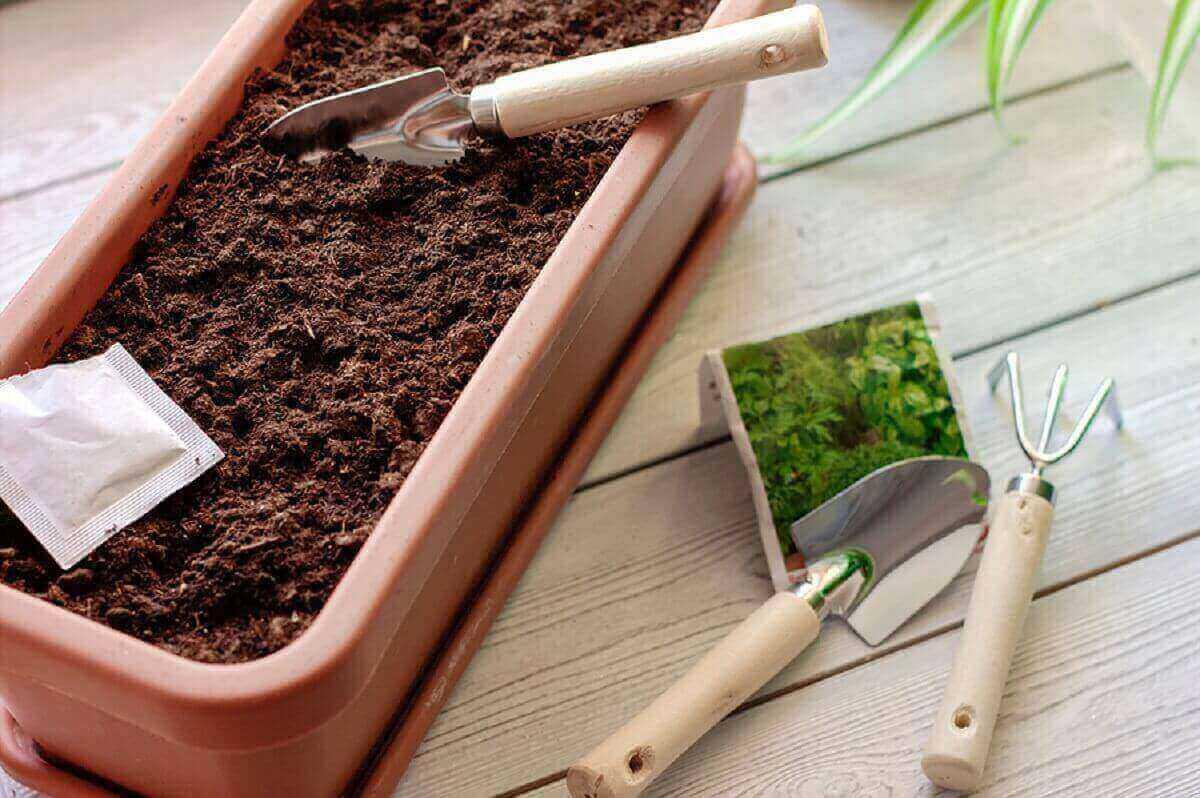 Top 5 Marijuana Fertilizers