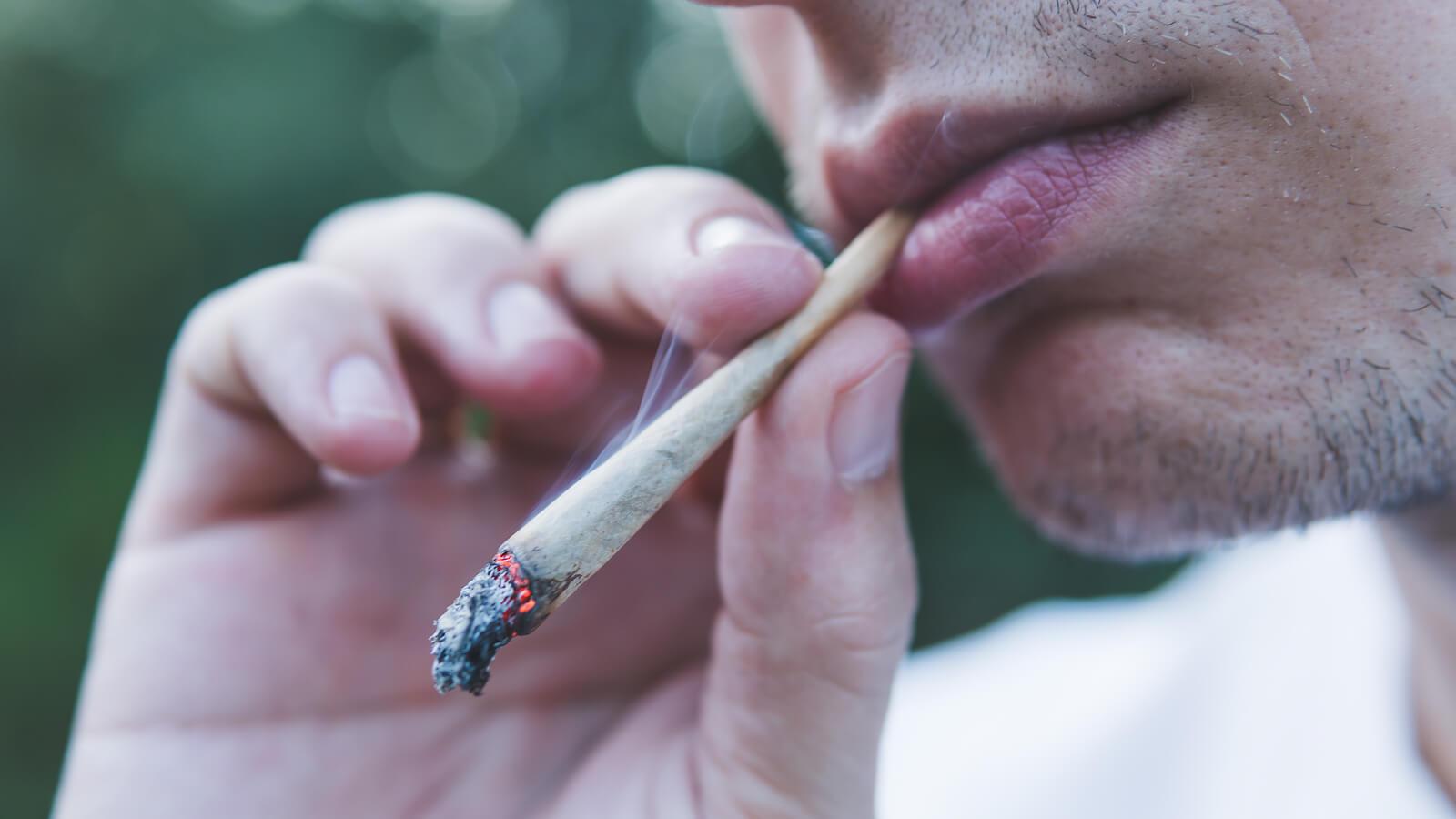 smoke weed stems