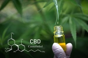 CBD Facts for Users