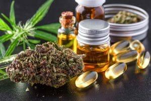 Medical Marijuana and Epilepsy