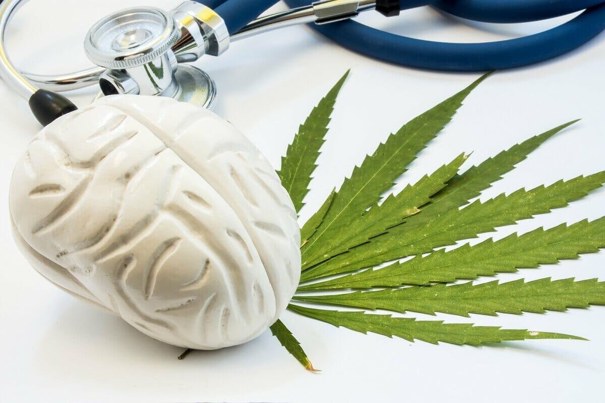 CBD to Your Brain