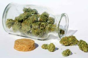 Marijuana In a Jar