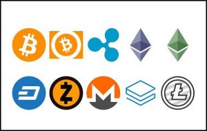 Bitcoin Cropkingseeds