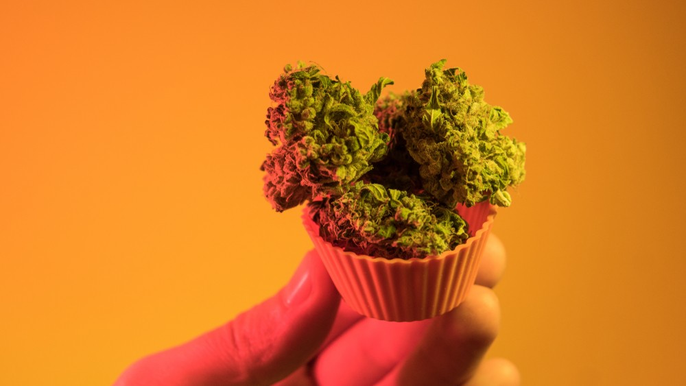 best marijuana strains for sale