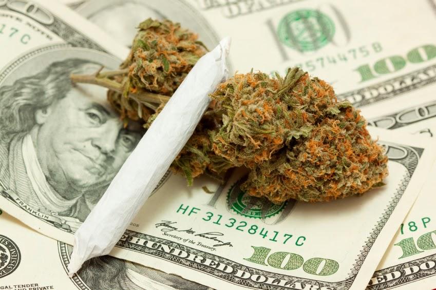 how cannabis can make you rich